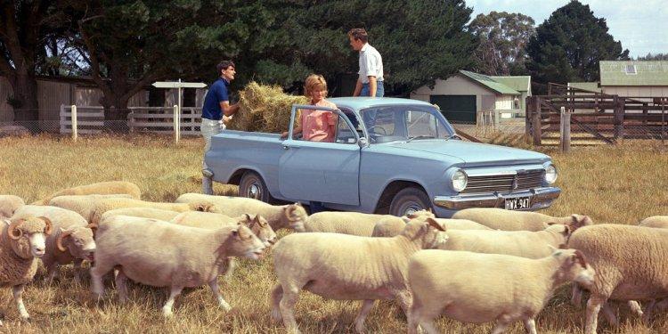 Australia s Once-Vibrant Auto